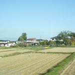 Scenery from train ride 11