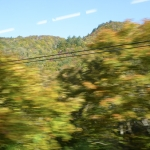 Scenery from train ride 3