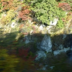 Scenery from train ride 6