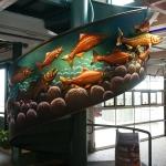 salmon stairs